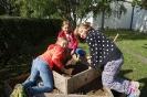 Erdäpfelpyramide Ernte 2017_5